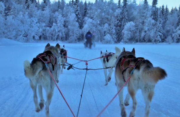 Продление ограничений: Финляндия небудет пускать туристов до9февраля