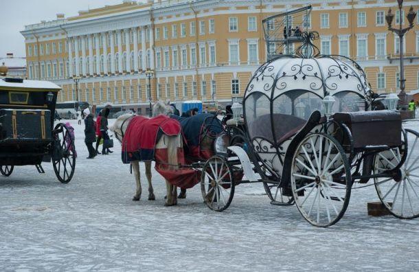 Петербуржцев ожидает морозная погода иветер