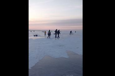Петербуржцы превратили Финский залив вкаток