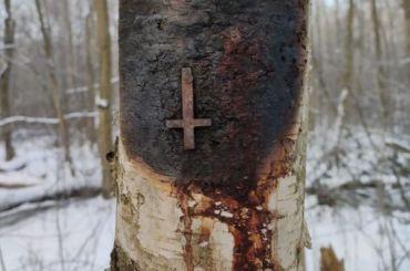 Житель города Кудрово случайно нашел возможное место собраний оккультистов