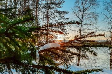 Ленобласть свяжет сФинляндией экологическая тропа