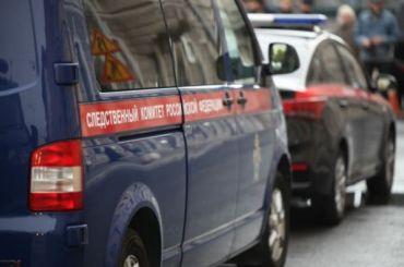 Уголовное дело возбудили пофакту нападения насотрудника ДПС наСенатской