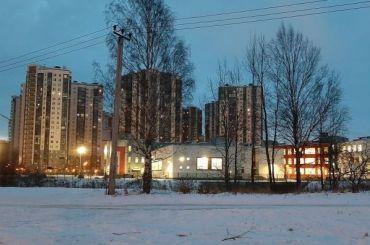 Депутат ЗакСа поддержал протестующих жителей Уткиной Заводи