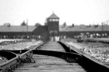 Главный раввин Петербурга подаст впрокуратуру заявление наотрицателя Холокоста