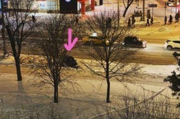 «Теперь преследуют как жену врага»: Юлия Навальная заявила ослежке
