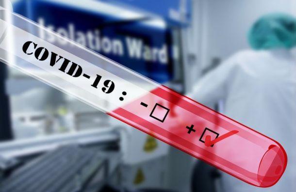 Засутки вПетербурге выявили коронавирус у1813 человек