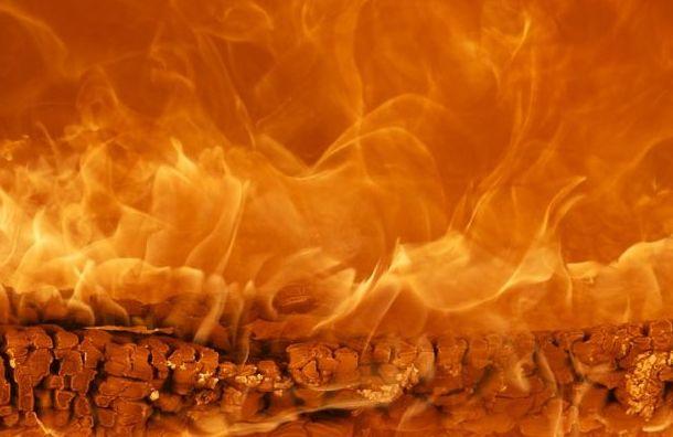 Три человека погибли при пожаре вПарголово