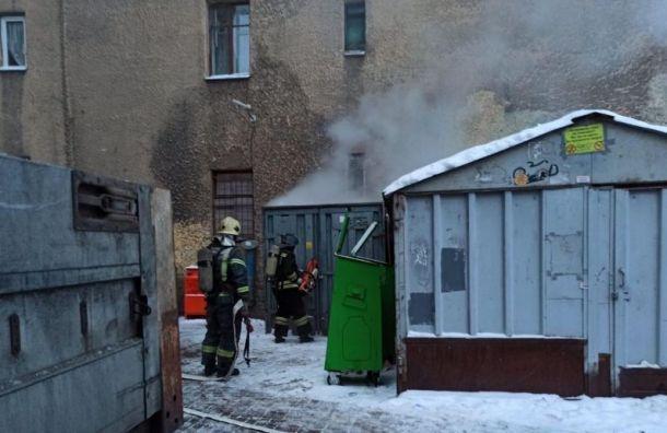 Семь кроликов погибли впожаре вцентре Петербурга