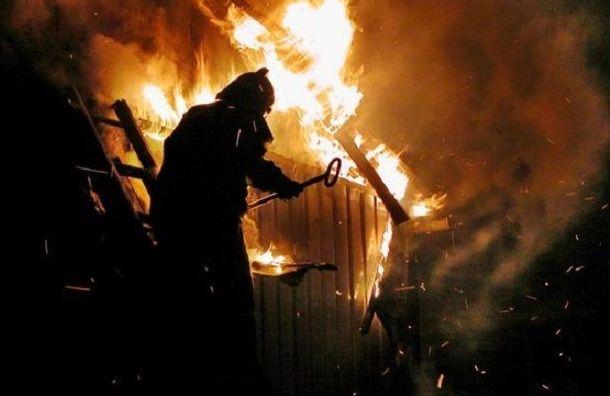 После пожара натурбазе вКоккорево нашли тело мужчины