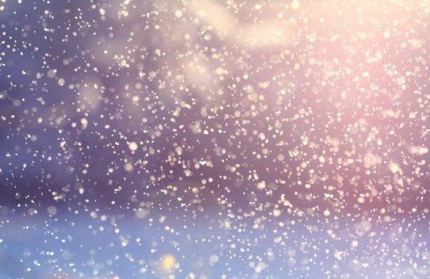 Петербуржцев предупредили, что навыходных город завалит снегом