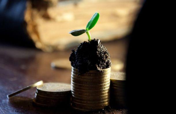 Каждому пятому петербуржцу нехватает зарплаты наосновные нужды