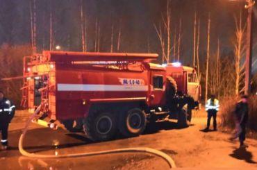 Два обгоревших тела нашли после пожара всадоводстве под Гатчиной