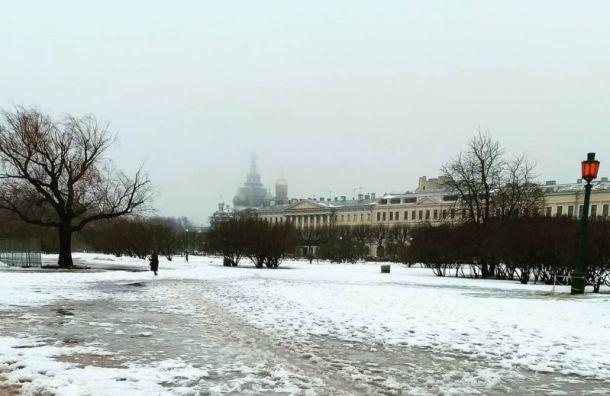 Дождь имокрый снег побеспокоят петербуржцев 27февраля