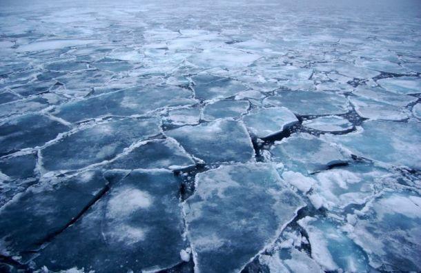 Вовремя праздников спасатели сняли сотколовшейся льдины вПетербурге 15 рыбаков