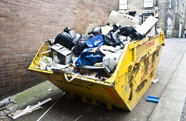 Инициатива против мусоросжигания набрала 100 тысяч голосов навсероссийском голосовании