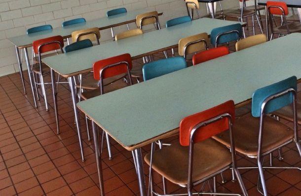 Эксперты нашли кишечную палочку вдвух школах вКронштадте