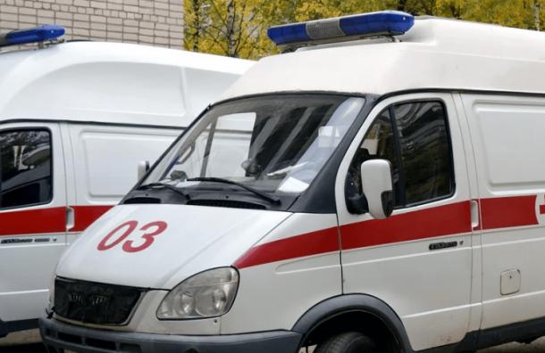 Жительница Всеволожска подстрелила сожителя вМеждународный женский день