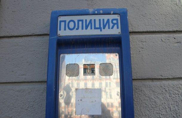 Четверо кавказцев похитили иограбили женщину вПетербурге