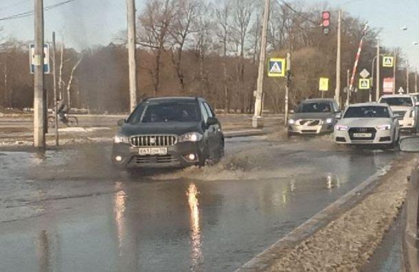 Петергофское шоссе затопило из-за прорыва трубы