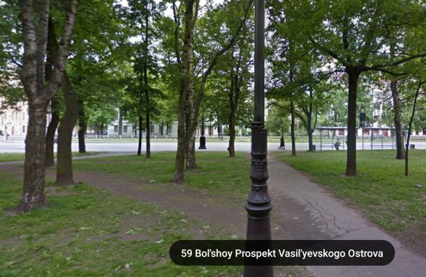 Бульвару наБольшом проспекте В.О. хотят вернуть историческое озеленение