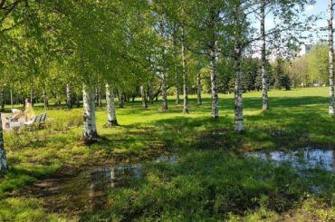 Появилась петиция засохранение парка академика Сахарова
