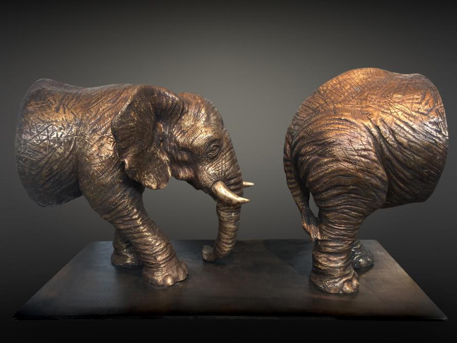 Стефано Бомбардьери. Путь слона. 2009.jpg