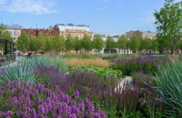 ВПетербурге выбрали лучшие проекты поцветочному оформлению набережных