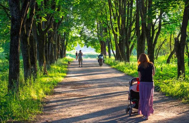 Еще шесть парков стали доступны для прогулок после просушки