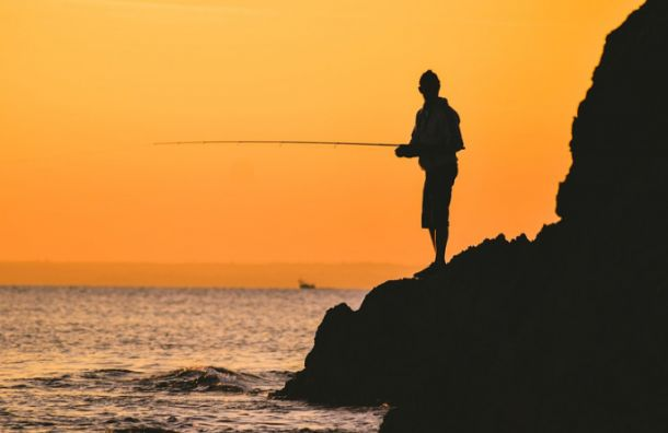 Пограничники напомнили, какую рыбу запрещено ловить в Финском заливе весной