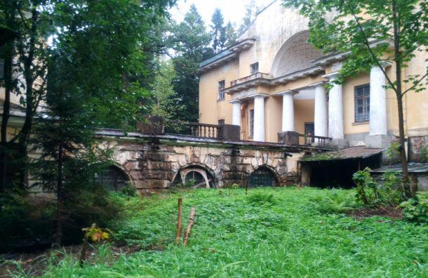 Дворцы идругие объекты усадьбы Шуваловых выставлены наторги
