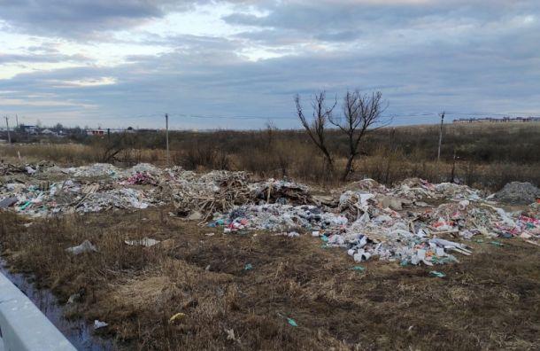 «Свалочный марафон вразгаре»: рядом сМосковским шоссе растет помойка