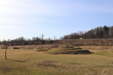 Парк «Дальняя Рогатка» вШушарах станет общественным пространством