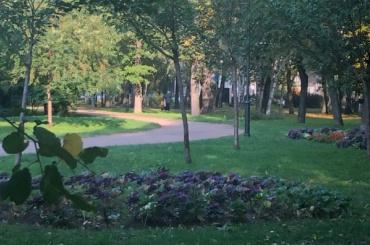 Петербургские парки начали открывать после просушки