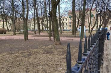 Девять садов ипарков Петербурга открылись после просушки