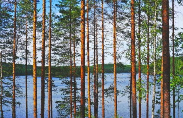 Финляндия продлила ограничения навъезд доконца мая