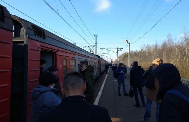 Пригородные электрички попути вПетербург застряли вдеревне Капитолово