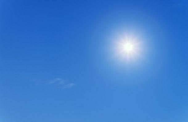 Все теплее итеплее: вчетверг воздух вЛенобласти прогреется до +26