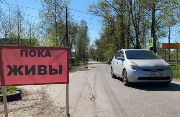 «Пока живы»: жители Пушкина установили баннеры наСадовой