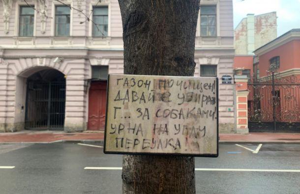 Мусорный тупик: жители Гродненского переулка пожаловались наотсутствие урн
