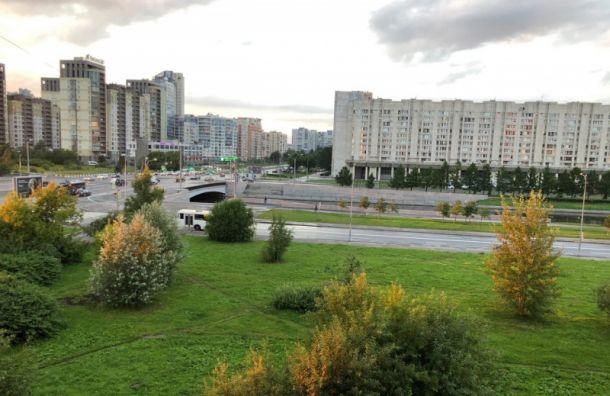 Усквера «Осенний марафон» наВасильевском острове появился подрядчик