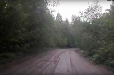 Петербуржцы устроили всоцсетях конкурс на«лучшую» дорогу