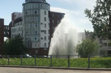 «Сезон фонтанов открыт»: вПушкине из-под земли забил гейзер