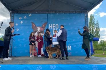 Участники «Необыкновенного кросса» вПетербурге бежали высунув языки