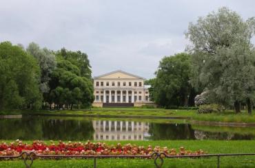 Из-за усиления ветра вПетербурге закрывают парки, сады искверы