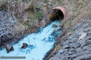 Петербургские ифинские ученые создали установку для очистки водоемов