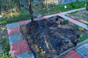 ВКрасном Селе задержана предполагаемая поджигательница могил