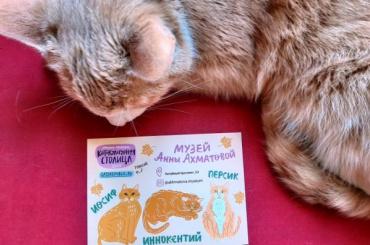 Открытки про котиков появились вмузее Ахматовой