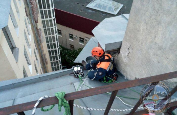 Спасатели «Кошкиспаса» освободили голубя изводосточной трубы
