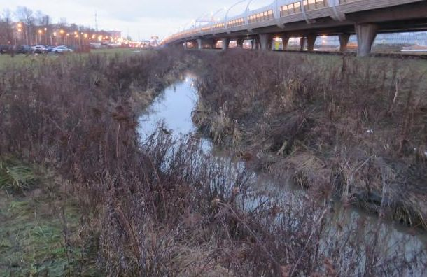 Оператора аэропорта Пулково оштрафовали зазагрязнение Лиговского канала