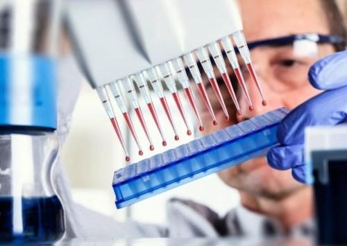 Тест на антитела.jpeg